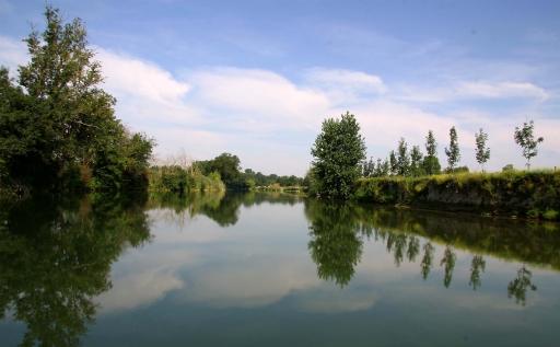 Parlons vie quotidienne : Ondes nature